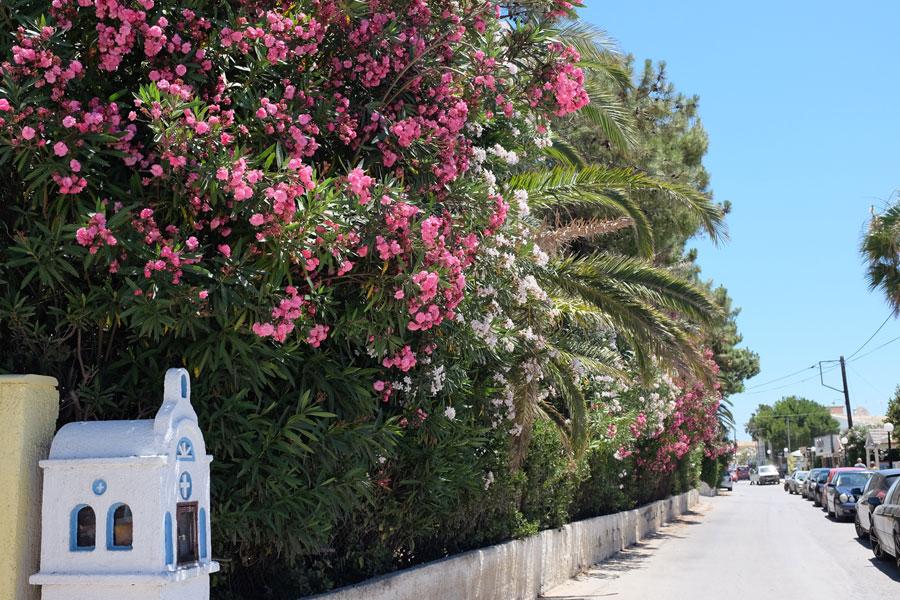 Korfu – ein Wochenende auf der grünen Insel