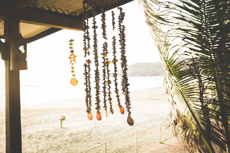 Ecuador Beach Sea Shells